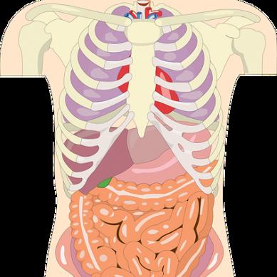 Hög risk för hjärt-kärlsjukdomar vid svåra infektioner